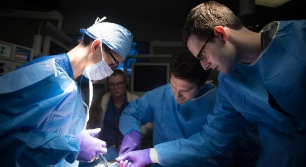 Microsurgery Fellowship