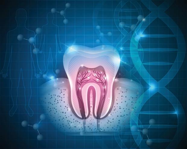 Dental Research